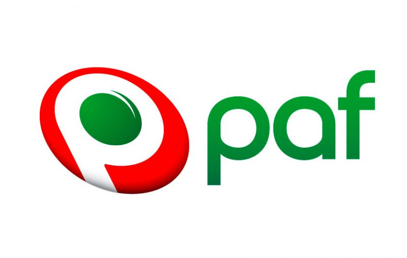 производитель игровых слотов PAF